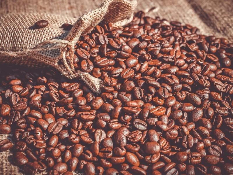 Productores de café demandan Atención al sector.