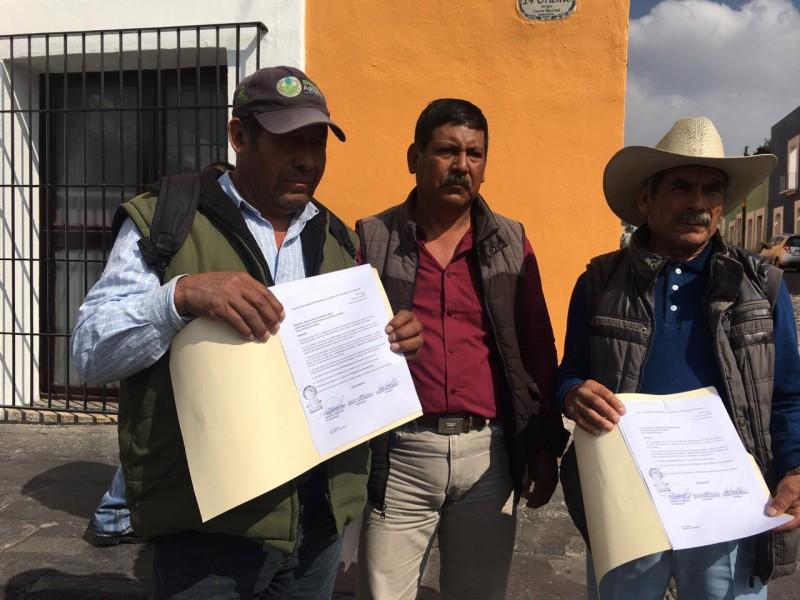 Productores de Tepeyahualco sufren estragos por sequia