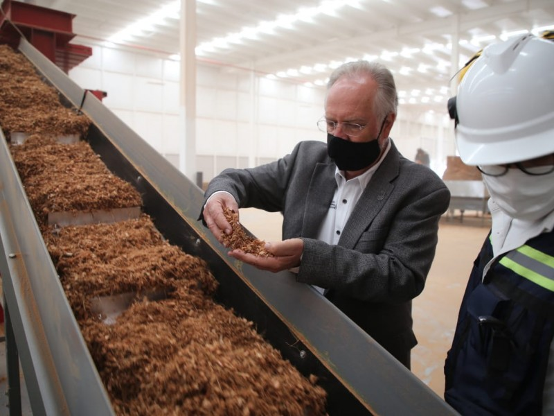 Productos derivados de coco se producirán en Querétaro