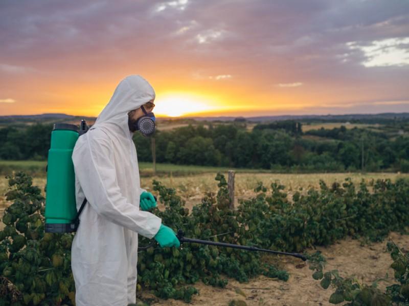 Prohíbe Congreso de Oaxaca uso de herbicidas
