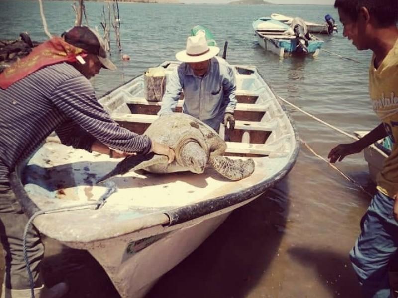 Promotores ambientales comunitarios, buscan rescatar el lugar donde viven