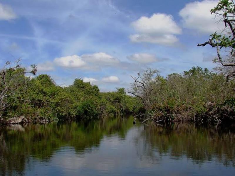 Promueve INAPESCA manejo sustentable de especies en Marismas Nacionales Nayarit