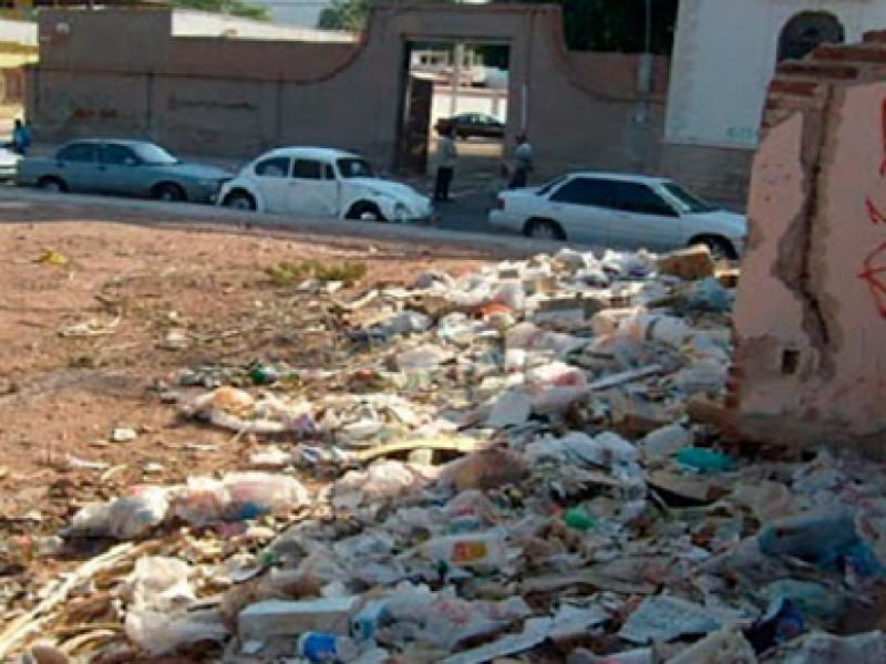 Propietarios de terrenos baldíos pueden ser acreedores a multas