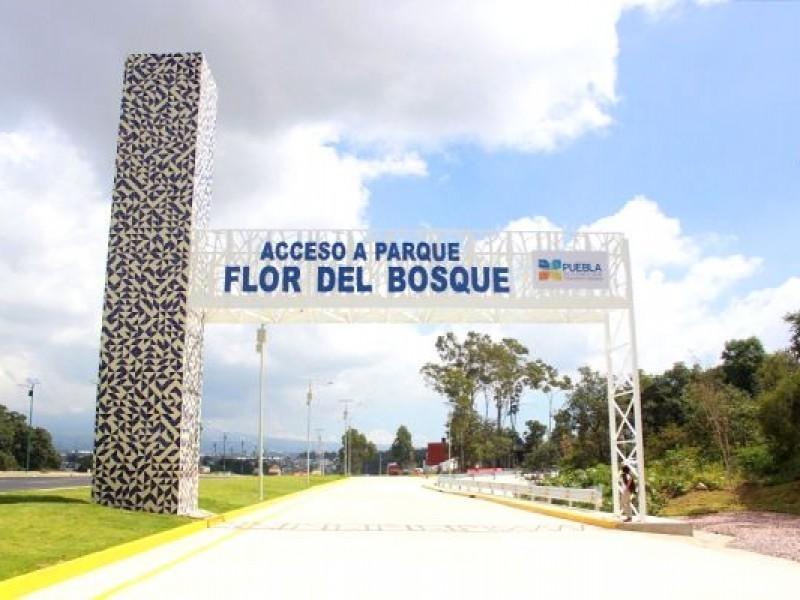 Proponen creación de comité intermunicipal para rescate de #FlorDelBosque