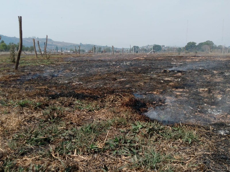 Proponen reconversión de turbera de Tepic en Área Natural Protegida