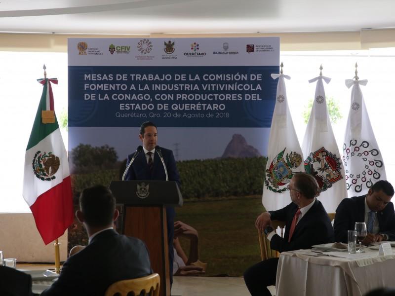Querétaro se posiciona en sector vitivinicultor