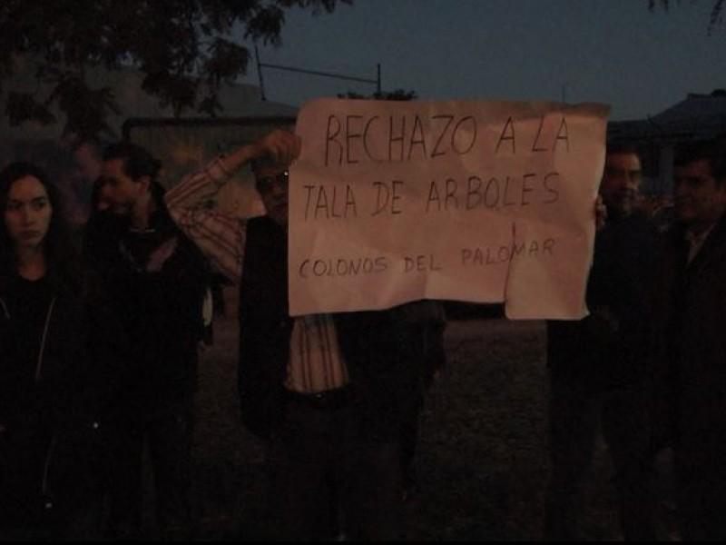 Protestan en Palomar por tala de 11 árboles