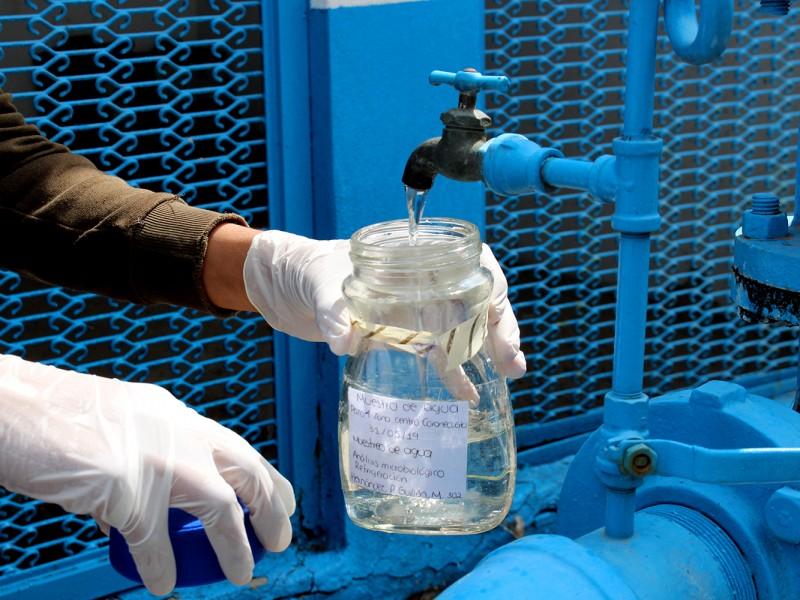 Prototipo a base de hongos para mejorar aguas