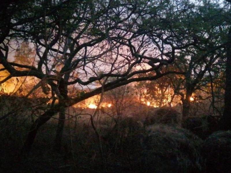 Provocan vientos 3 incendios más en La Primavera.