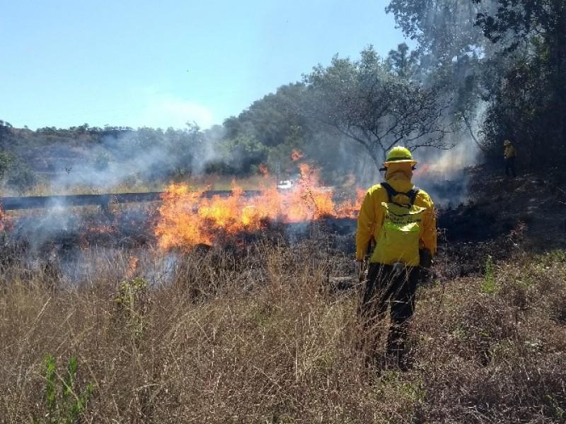 Proyecta COFONAY utilizar tecnología satelital para detectar incendios