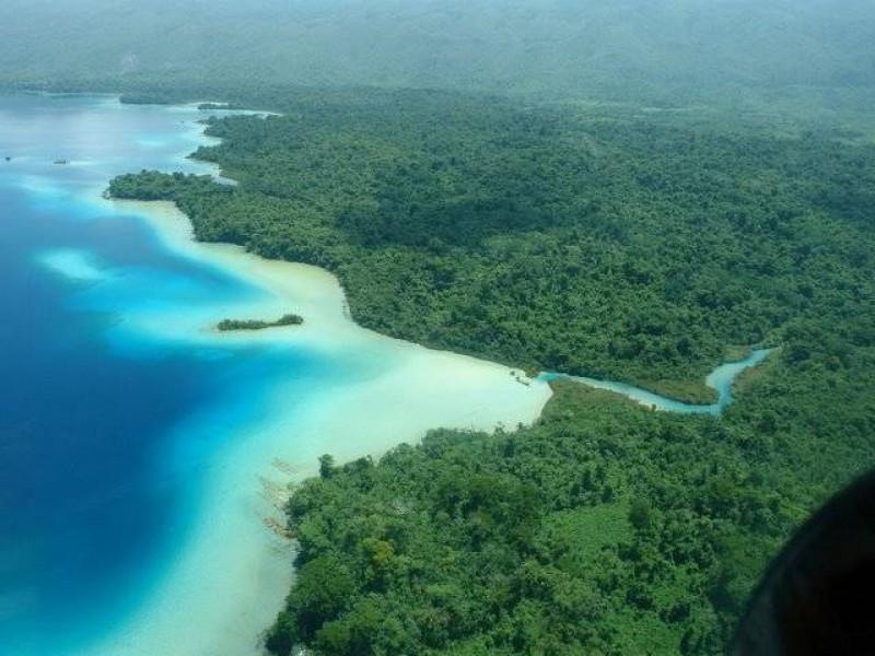 Proyecto ambiental llegaría a Montes Azules