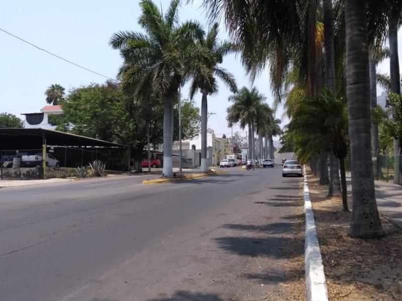 Proyecto de Av Jacarandas será socializado