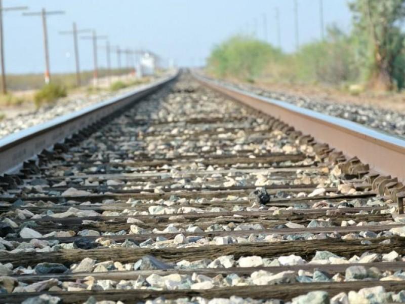 Proyecto ferroviario potencializará zona norte