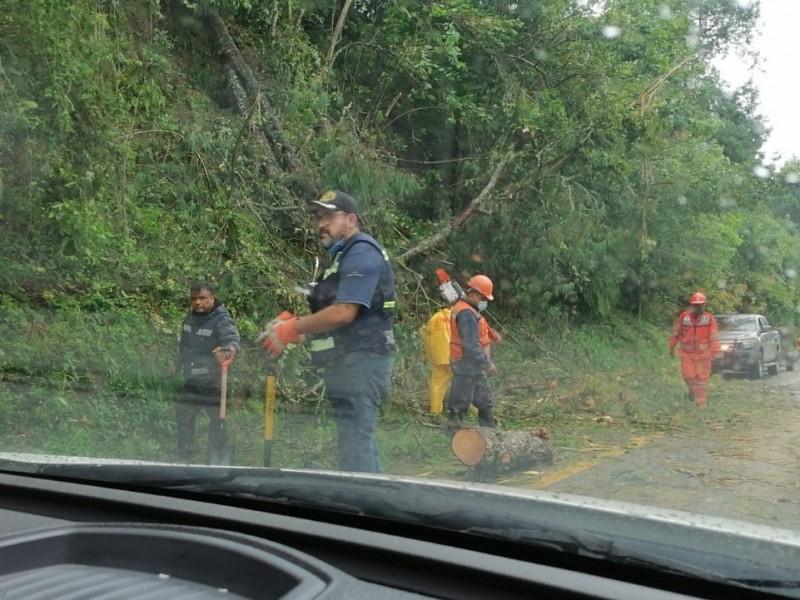 Puebla, segundo estado con más afectaciones por Huracán Grace