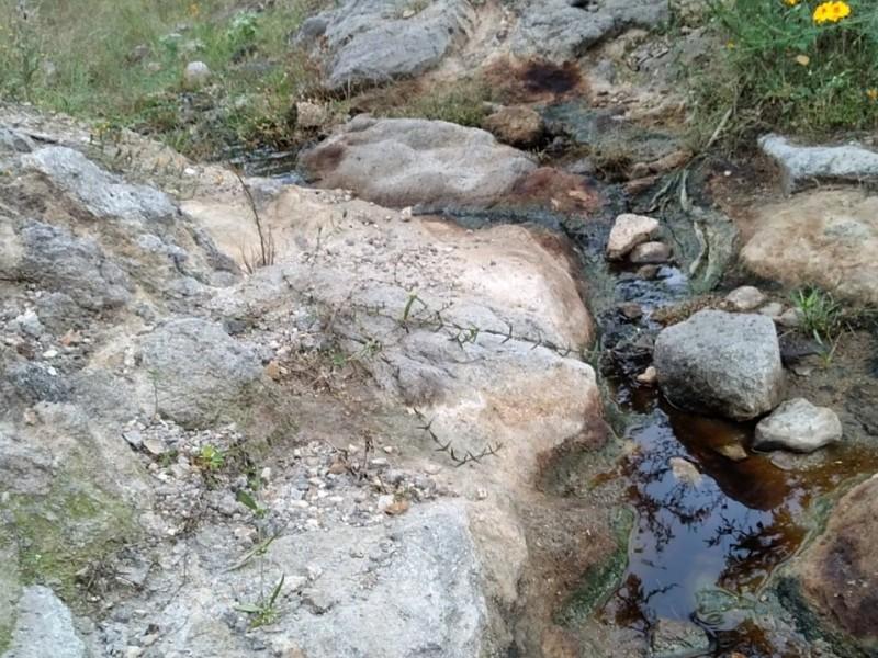 Pueblos denuncian que basureros contaminan arroyos en Zapopan