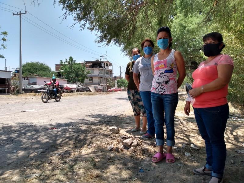 PVEM propone reemplazar comités de colonos por asambleas en León