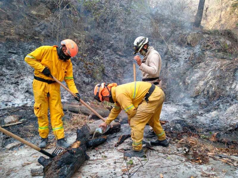 Queda controlado incendio en Nuevo León