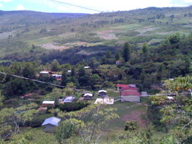 Quedan 13 municipios sin COVID-19 en Chiapas: SSA