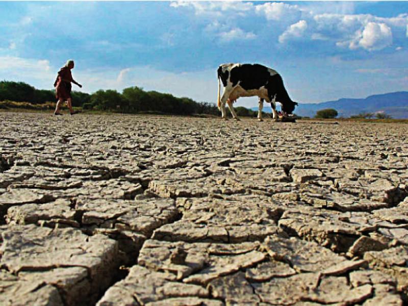 Quedan dos meses de sequía; en junio prevén recuperación: Conagua
