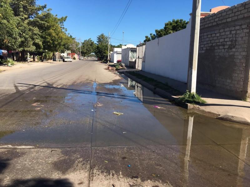 Quejas por aguas negras en Las Canteras