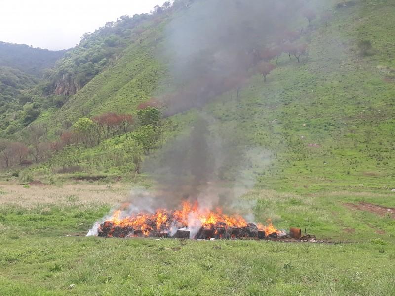 Queman 3 toneladas de droga en Nayarit