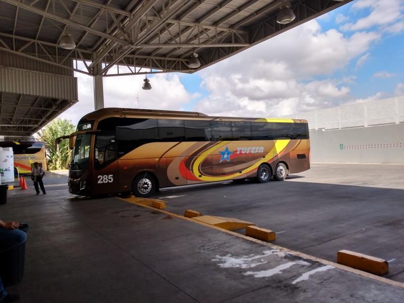 Reactivan corrida de autobuses en Sinaloa
