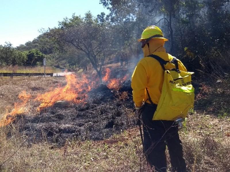 Realiza CONAFOR trabajos preventivos contra incendios
