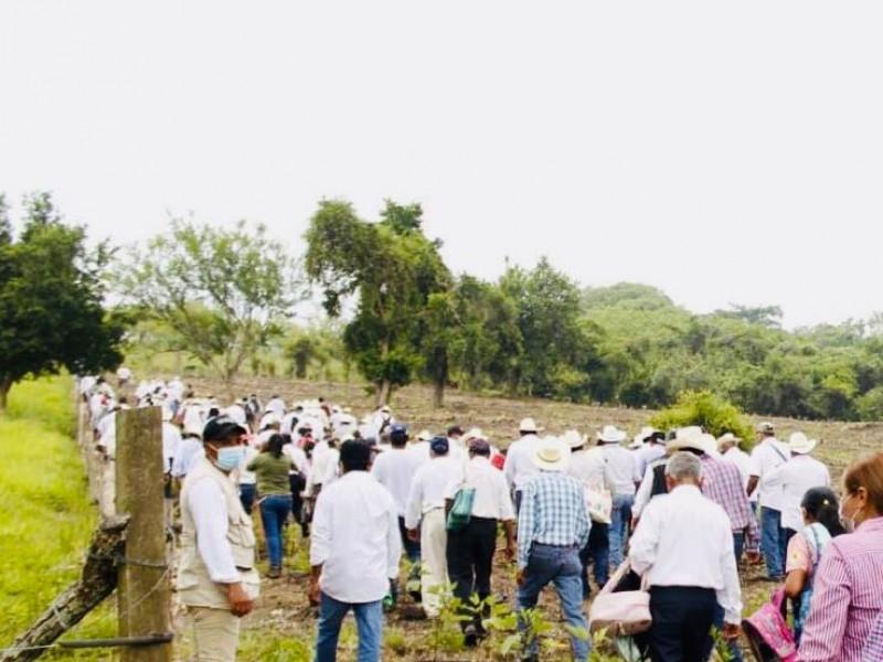 Realizan demostración de siembra en Tantima