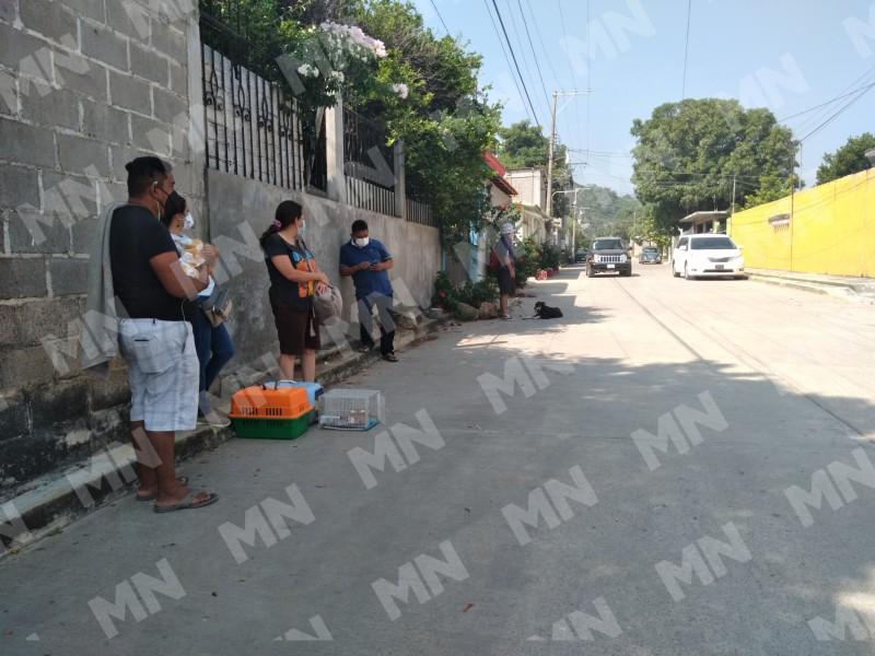 Realizan jornadas de esterilización a bajo costo en Salina Cruz