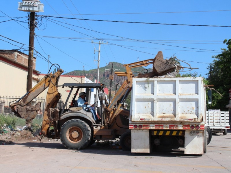 Realizan limpieza exhaustiva de basureros clandestinos