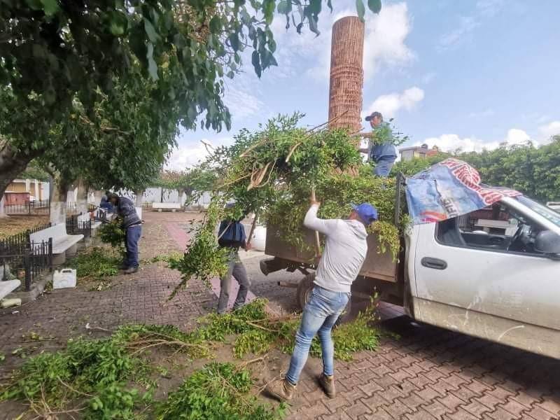 Realizan mantenimiento a parques y jardines de Zamora