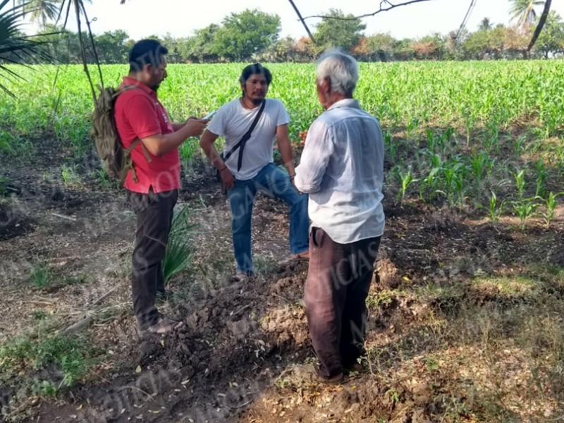 Realizan padrón de agricultores de Juchitán