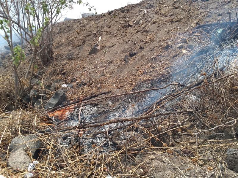 Realizan quema indiscriminada de pastizales