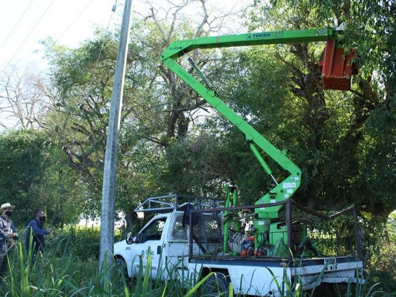 Reanudan servicio de agua tras poda de árboles