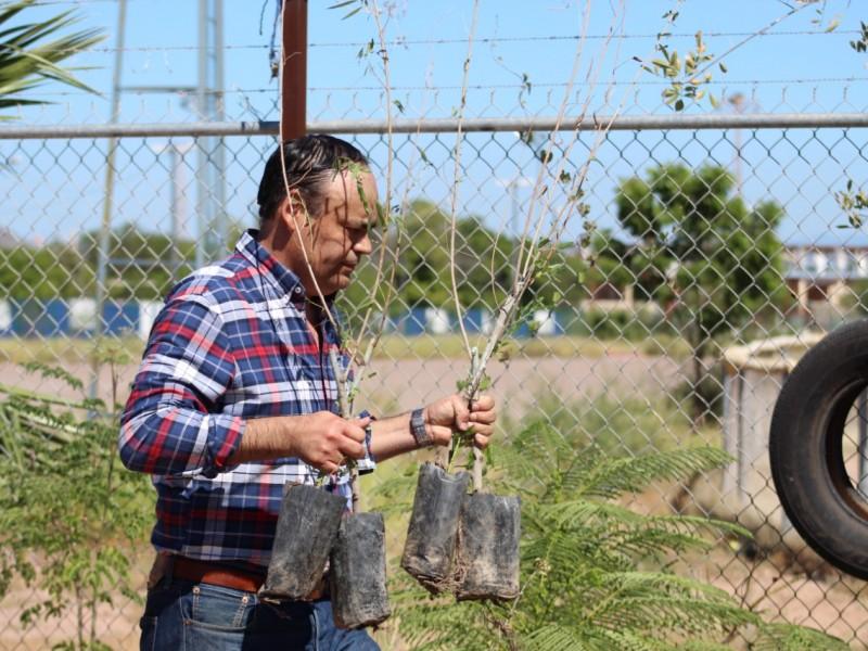 Recibe dirección de Ecología donación de plantas