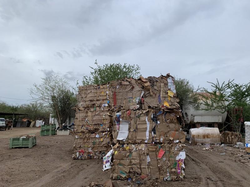 Reciclan hasta 1 tonelada de cartón al día