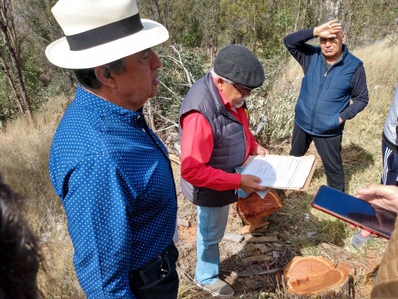 Reclaman tala de árboles en fraccionamiento Bosques La Encantada
