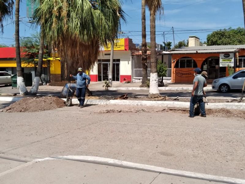 Recogen 120 toneladas de tierra por lluvias en Guaymas