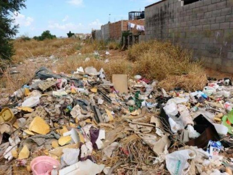 Recolectan 120 toneladas de residuos en basureros clandestinos