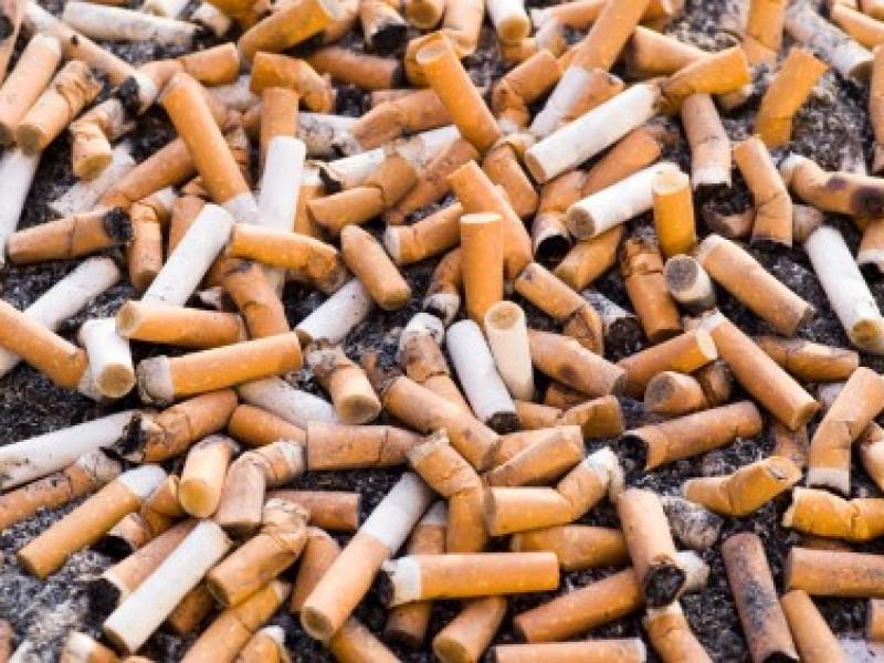 Recolectan 14 kilos de colillas de cigarro