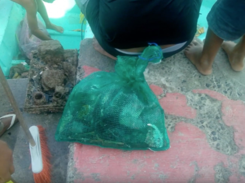 Recolectan una tonelada de basura en arrecifes