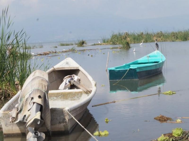 Recupera Lago de Chapala 29 centímetros  en temporal
