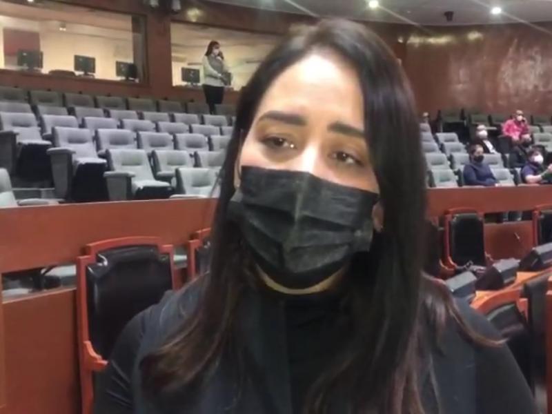 Redujeron a la mitad escoltas de Aristóteles Sandoval: Mariana Fernández