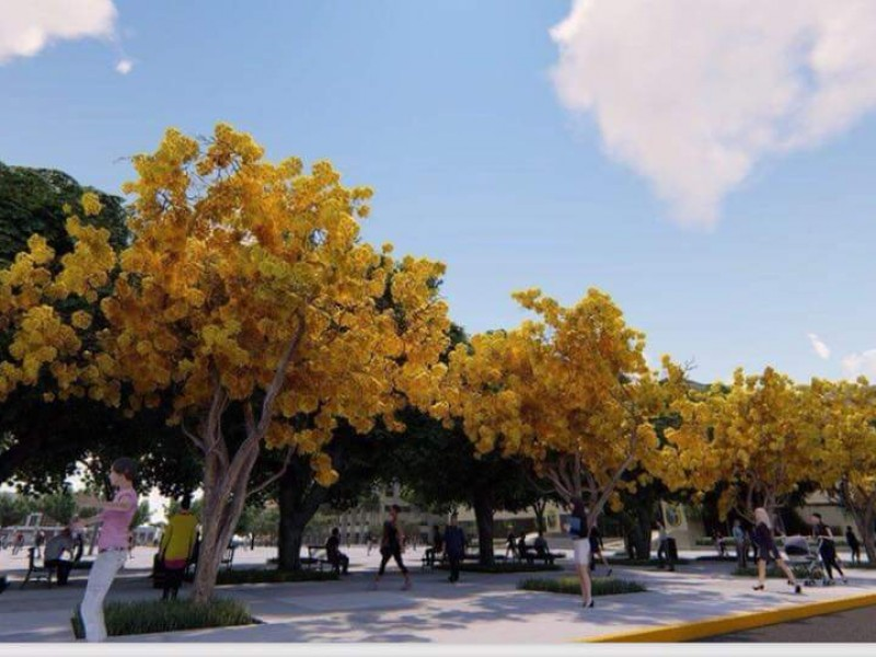 Reforestan la plaza central de Tuxtla