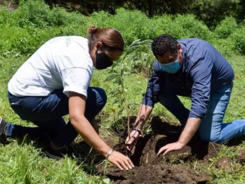 Reforzarán acciones de protección ambiental en Tangancícuaro