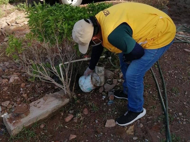 Reforzarán campaña de fumigación en San Miguel