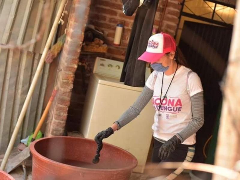 Refuerzan acciones para prevenir contagios de dengue en Jacona
