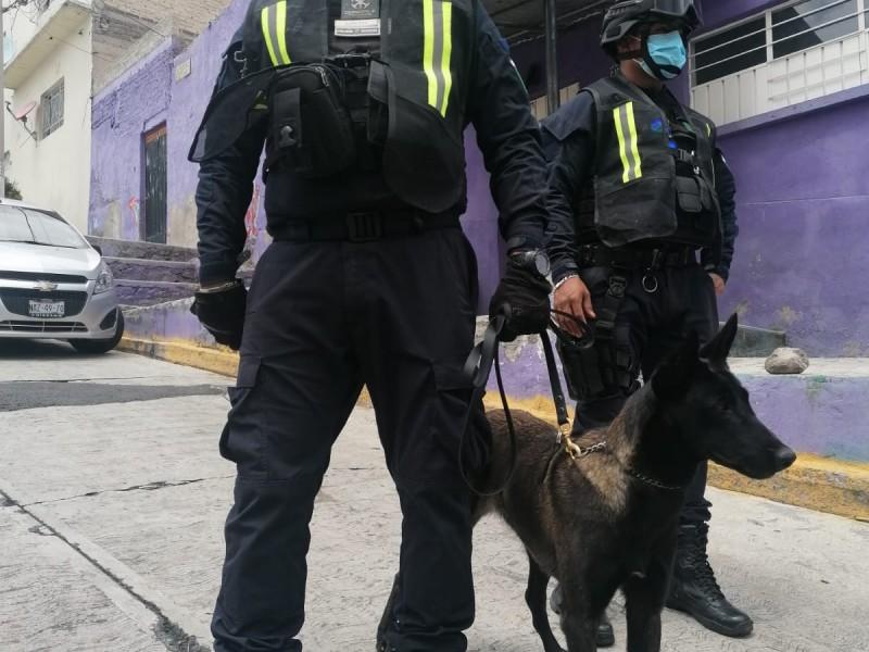 Refuerzan búsqueda de personas con caninos en Tlalnepantla