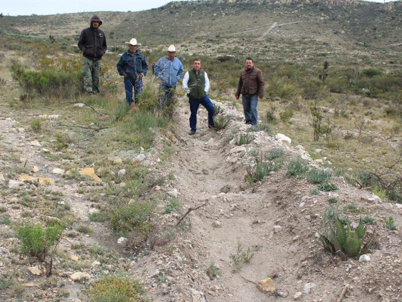 Regeneran terreno deforestado en Villa Hidalgo