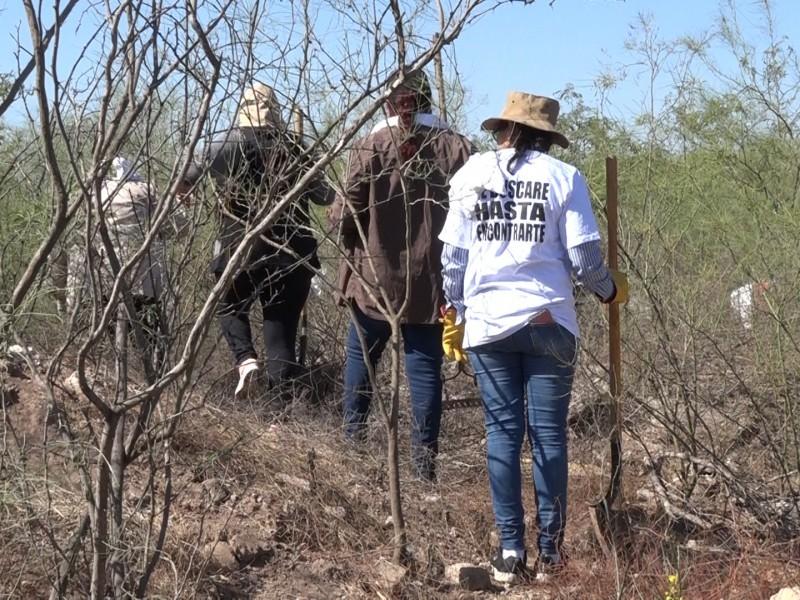 Registran 100 desapariciones forzadas en la zona norte de Sinaloa